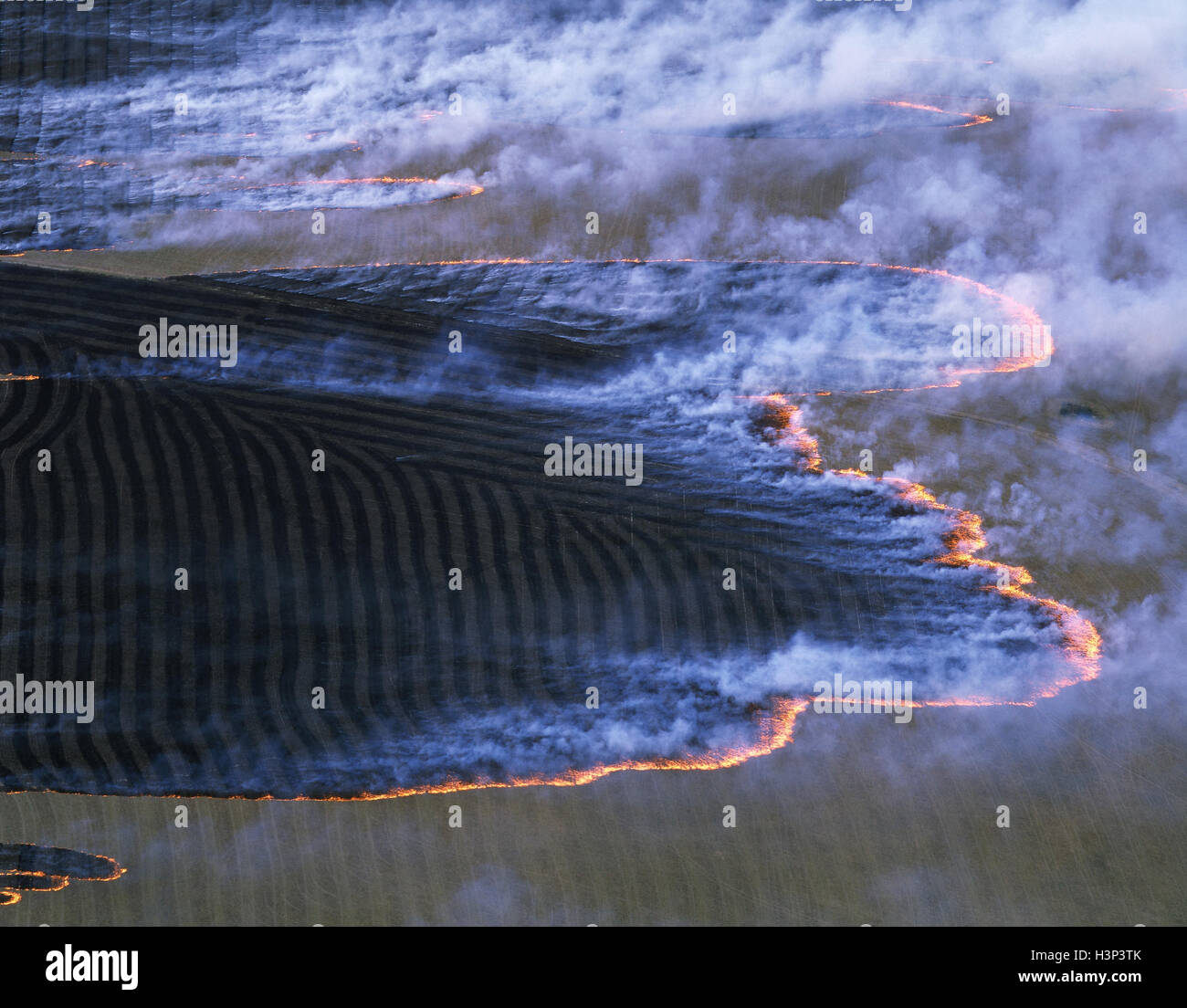 Fire on agricultural land, burning off. - Stock Image