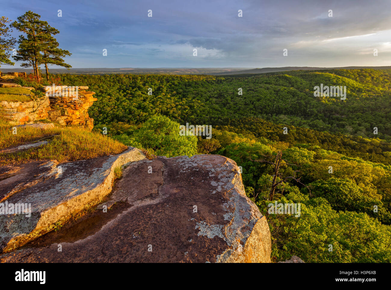 Petit Jean State Park, AR:  Sunset light on lichen covered sandstone cliffs from Cedar Creek Canyon Overlook on - Stock Image