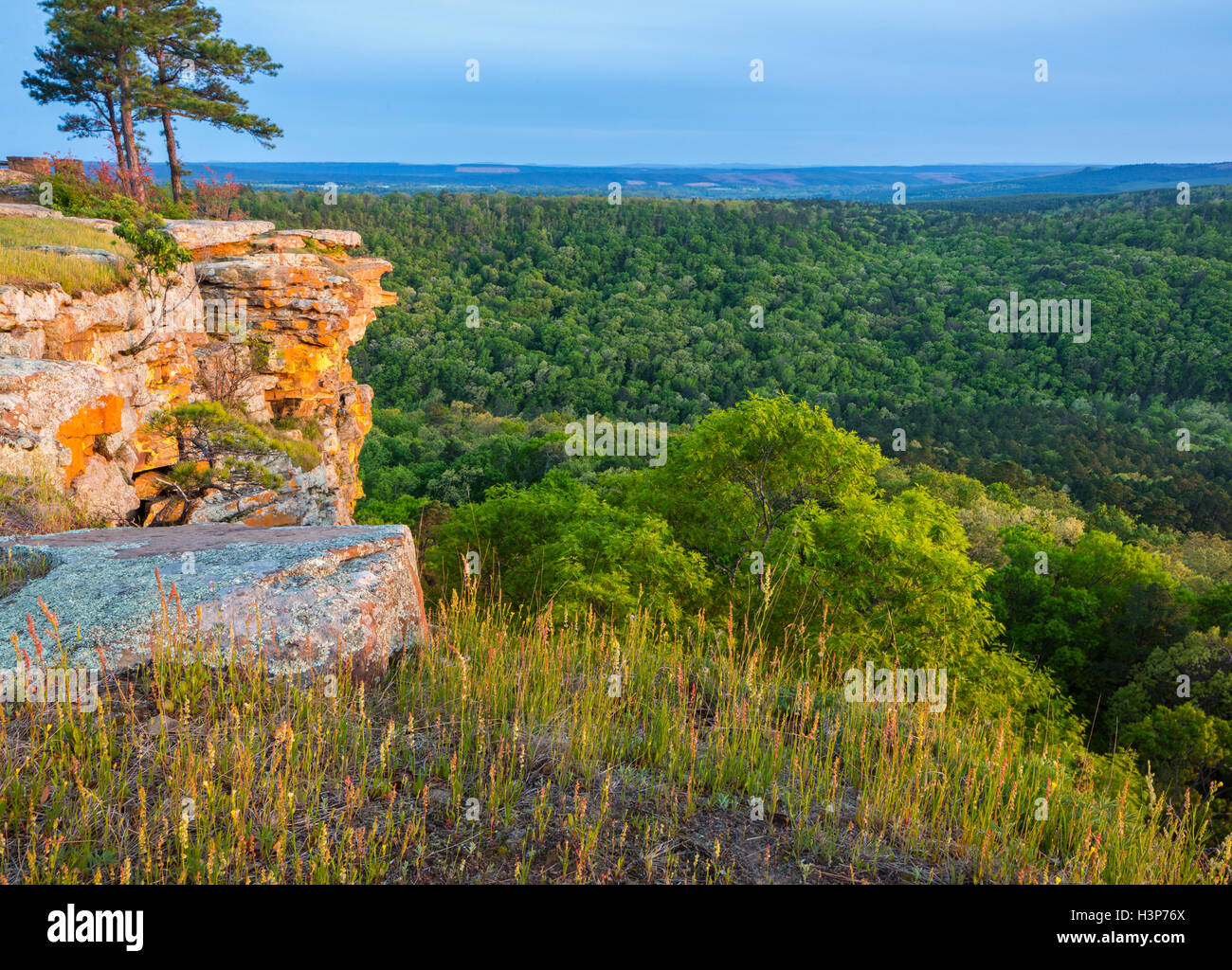 Petit Jean State Park, AR:  Lichen covered sandstone cliffs from Cedar Creek Canyon Overlook on Red Bluff Drive - Stock Image