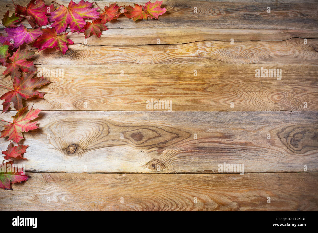 Thanksgiving Greeting With Fall Maple Leaves On Rustic Wooden Background Seasonal Vegetables And