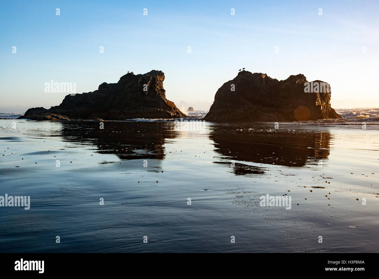 Sea Stacks on Ruby Beach - Olympic National Park, near Forks, Washington; USA - Stock Image