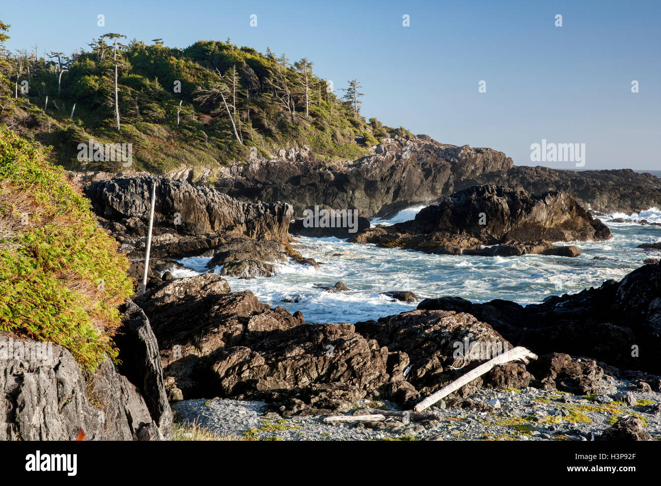 Rocky Bluffs - Wild Pacific Trail, Ucluelet, Vancouver Island, British Columbia, Canada - Stock Image