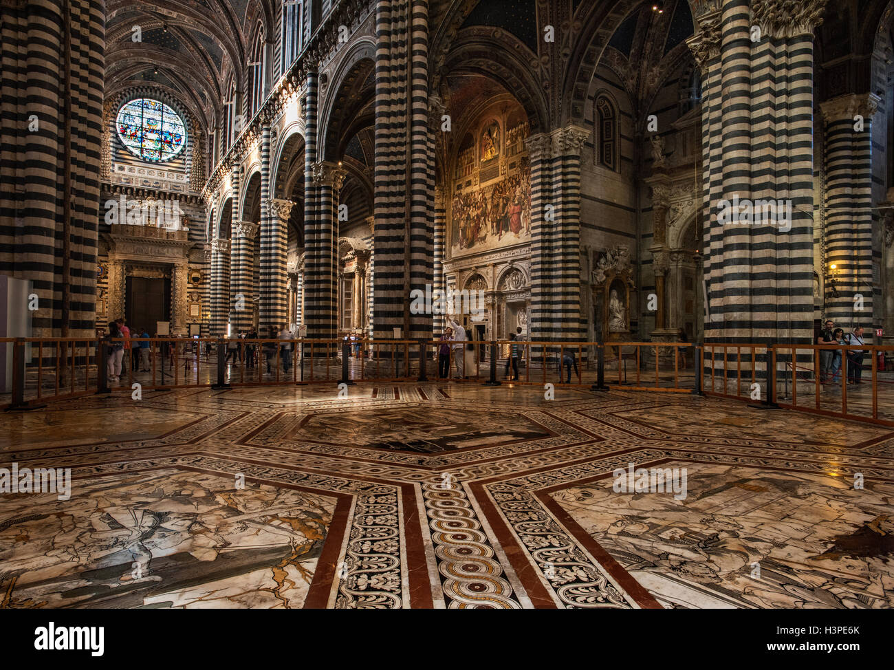 Siena, Tuscany, Italy. September 2016 The Duomo or Cathedral interior view showing the Marble floor with graffito - Stock Image