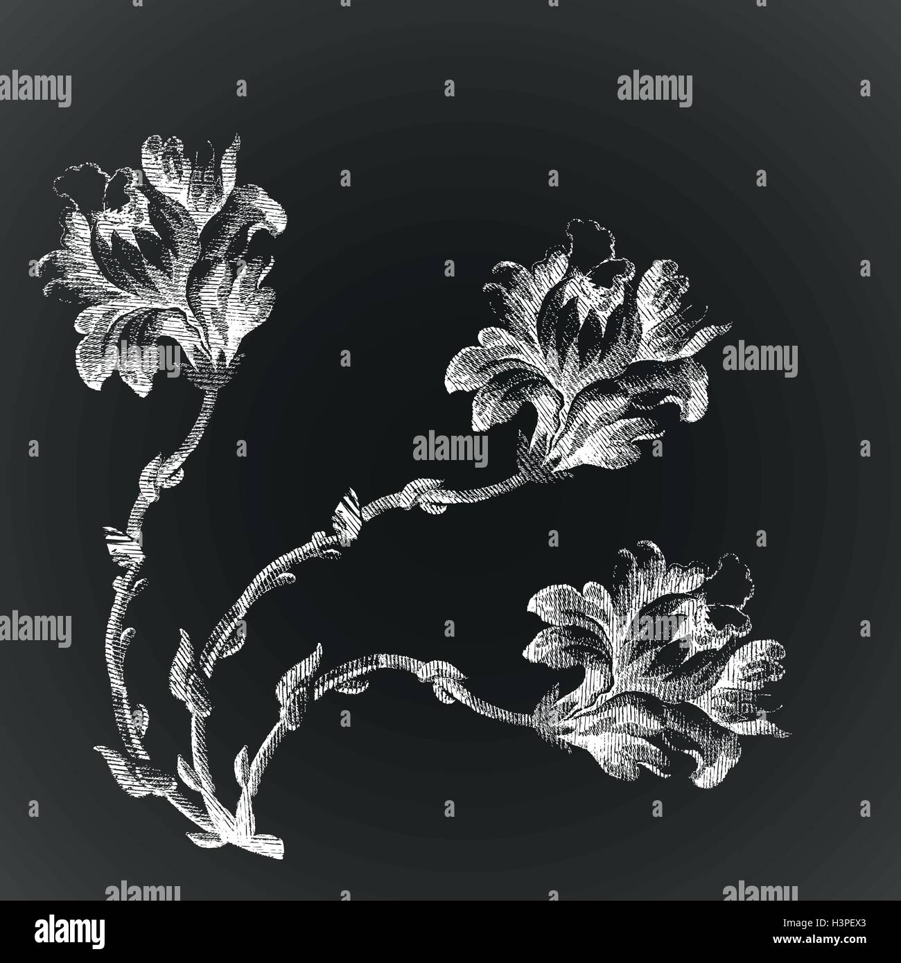 Vector Antique Glass Image Flower Lily Like Design with Leaves Buds Artwork Background for Kid Baby Boy Girl Artistic Portrait Photo Shoot Studio Props Video Drape 10x12 FT Photography Backdrop