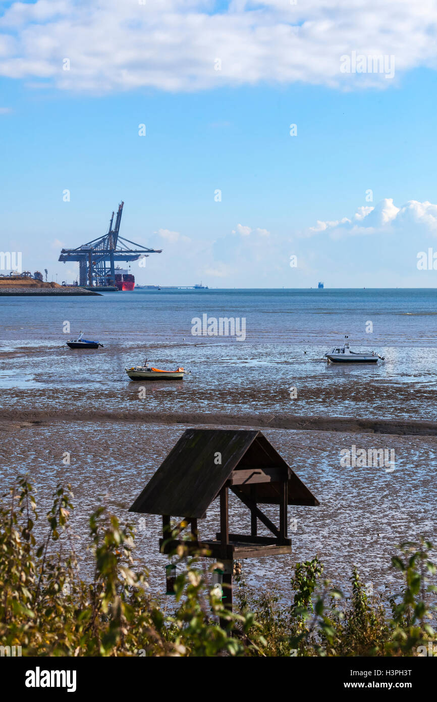DP World Deep Water Port of London Gateway Viewed from Thameside Nature Reserve with Bird Table in Foreground - Stock Image