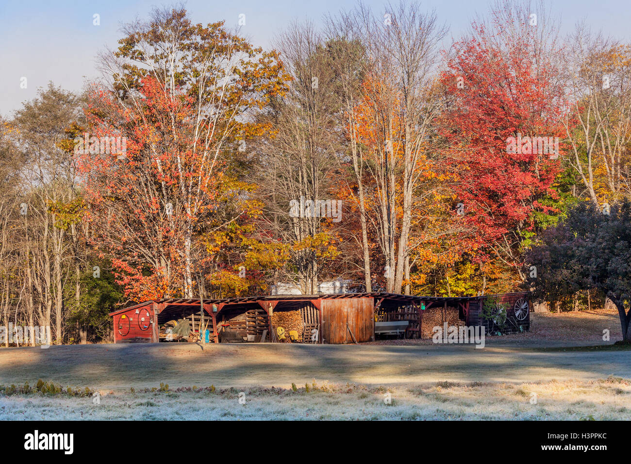 Scenic landscape of a barn filled with farm items and winter heating firewood, colorful Fall foliage and frost on - Stock Image