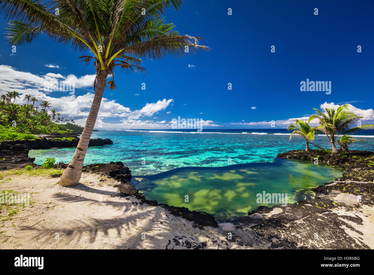 Natural infinity rock pool with palm trees over tropical ocean lagoon - Stock Image