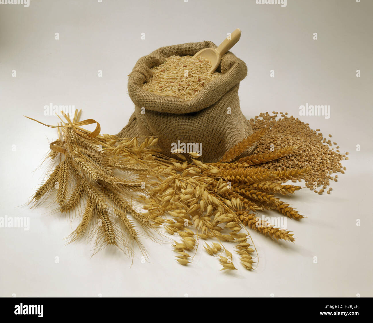 Grain, ears, pouch, travel cereals, cut outs - Stock Image