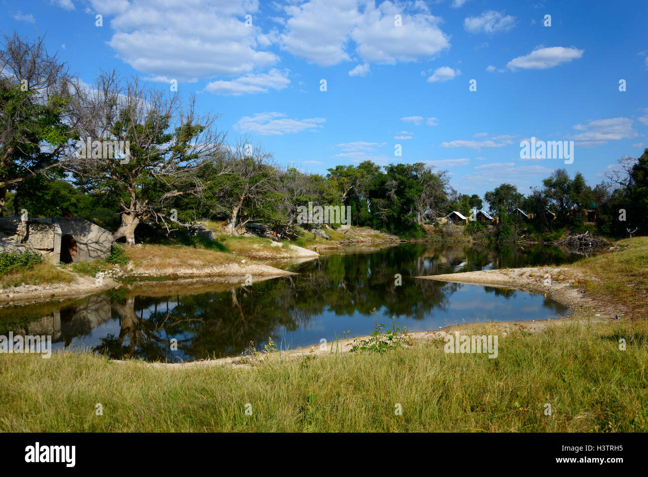 Thamalakane River, Maun, Botswana - Stock Image