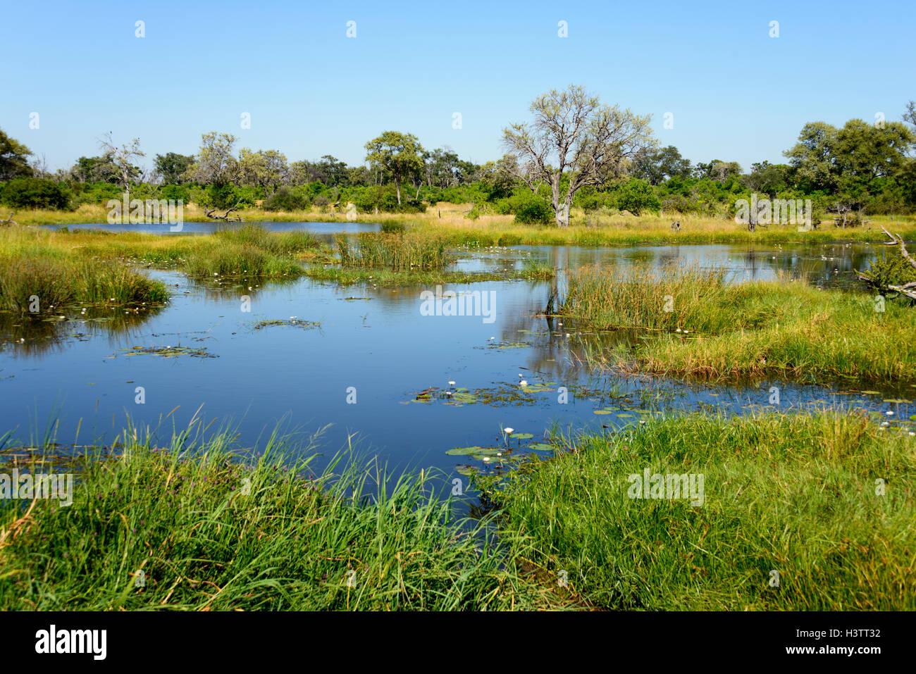 Khwai River near Mababe Village, Botswana - Stock Image