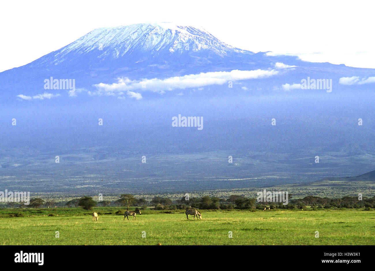 Mount Kilimanjaro, 5895 m, - Stock Image