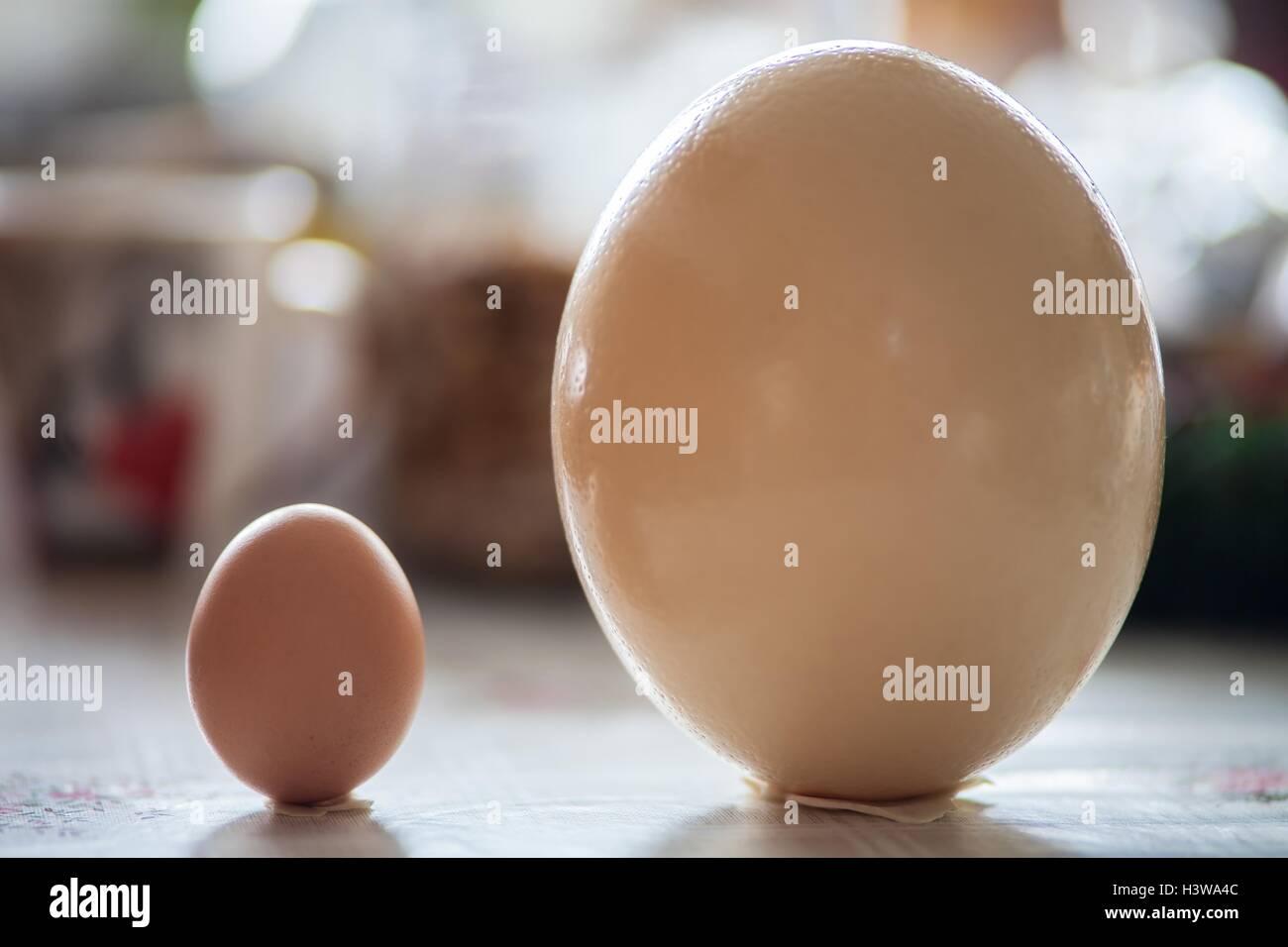 Snap Happy Birding: Flinders Ranges, Sth Australia  Ostrich Egg Size Compared To Chicken Egg