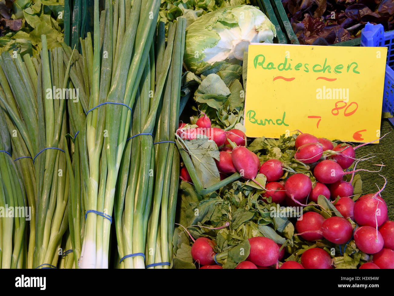 Shallots and radishes are for sale at a market stall on the weekly market in Langenhagen in the Hannover region, Stock Photo