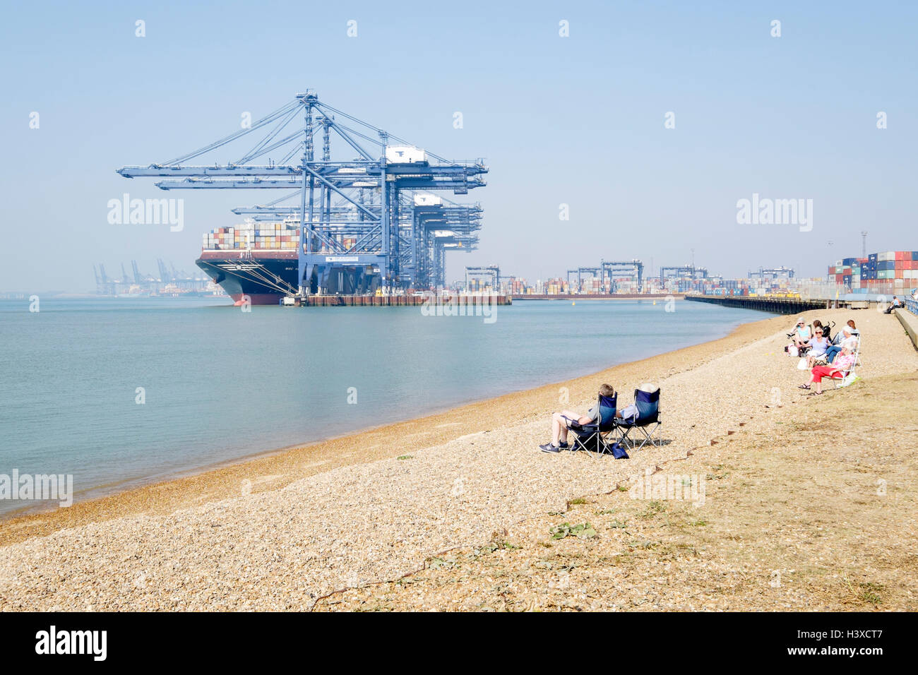 Sunbathers relax on the beach. MSC Venice container ship anchored in the port of Felixstowe, Suffolk, UK in the - Stock Image