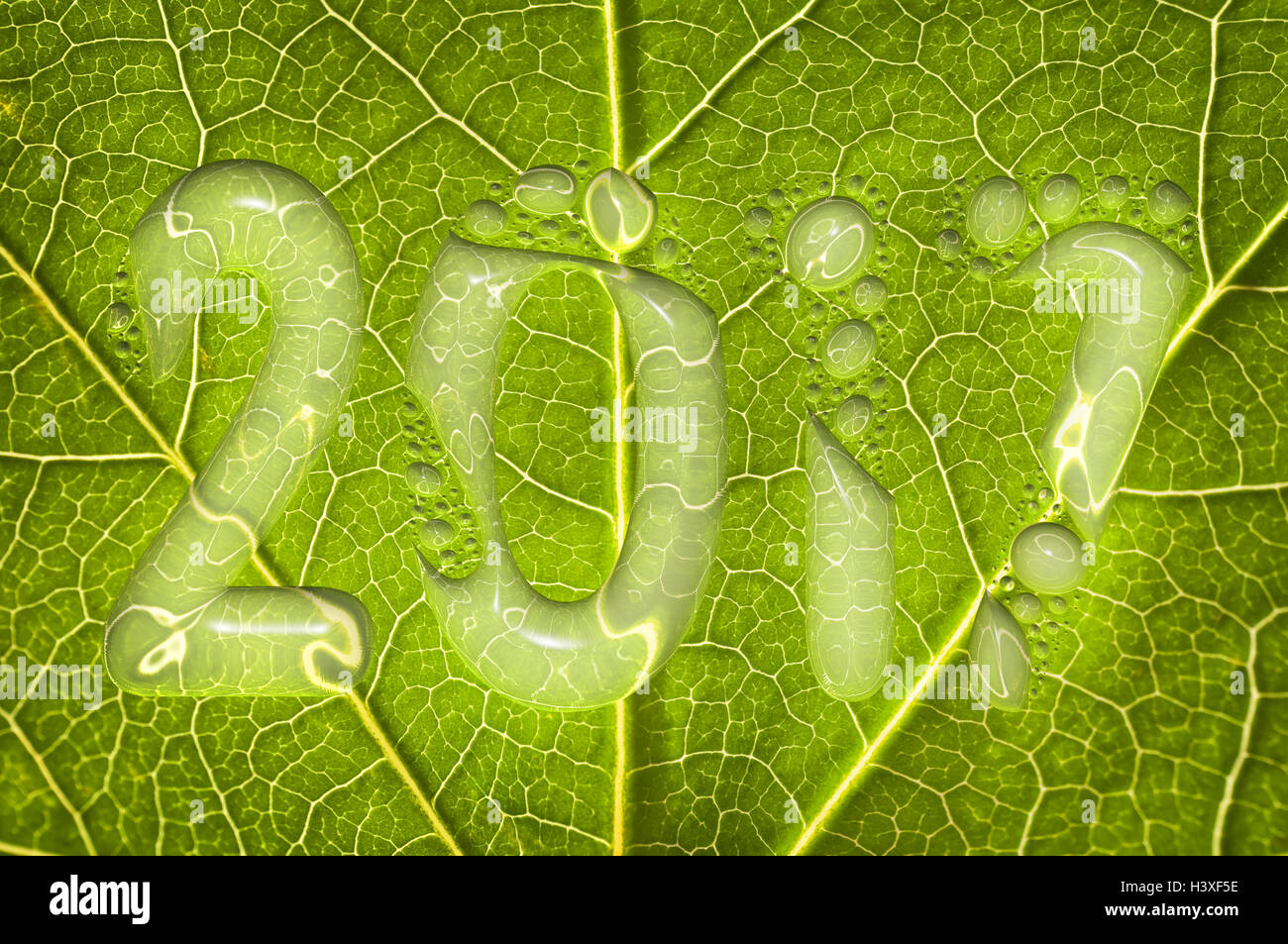 2017, rain drops on a green leaf background, 2017 new year environment concept - Stock Image