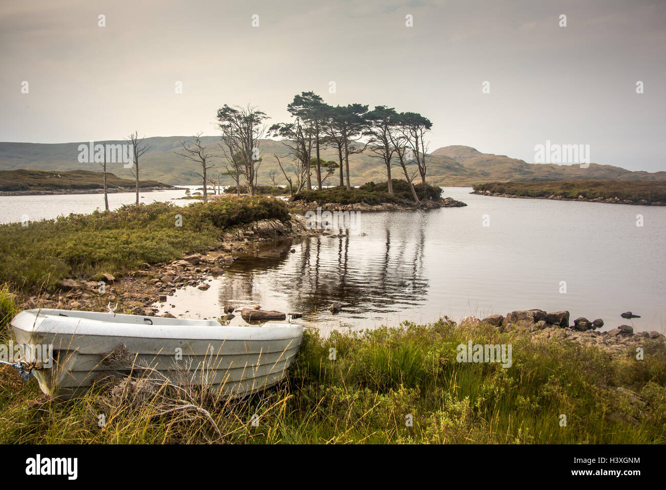 The edge of Loch Assynt - Stock Image