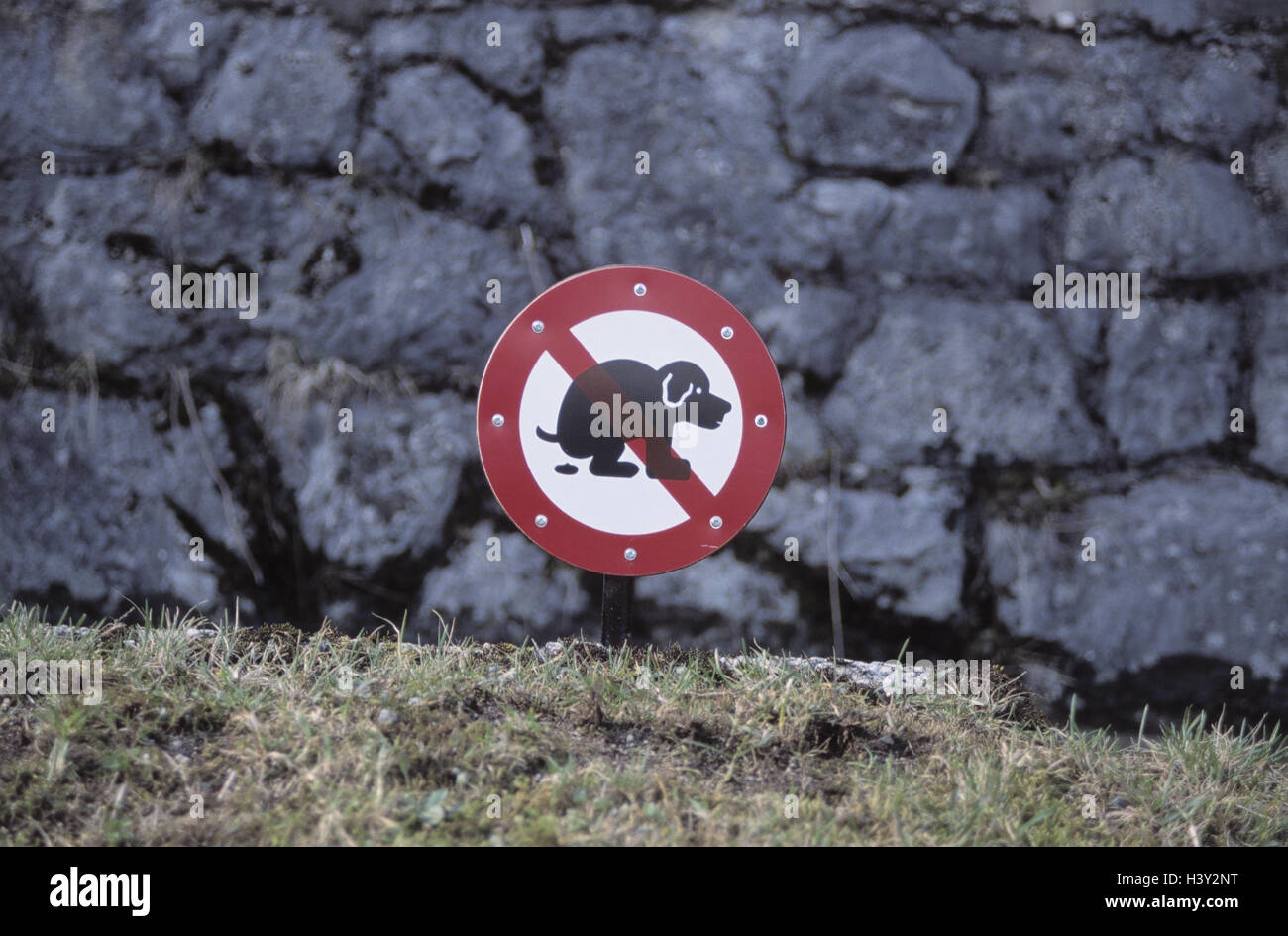 Wayside, no parking sign, 'dog excrement', sign, sign, excrement stop, icon, dogs, dog, height notations, - Stock Image