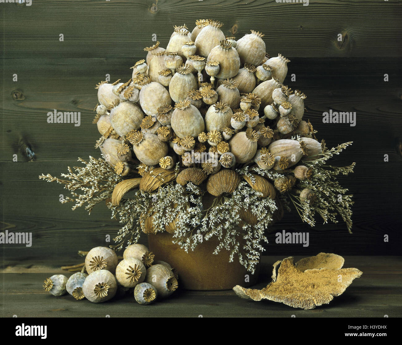 Dry bouquet, dry flowers, poppy seed capsules, arrangement, decoration, bouquet, dry - Stock Image