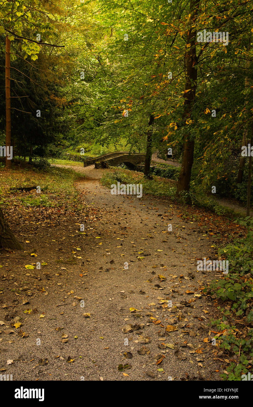 Forest garden path leading to the bridge crossing the Cyflymen ...
