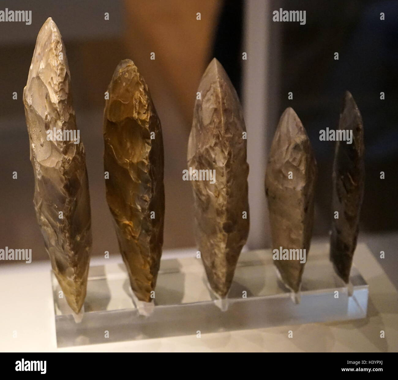 Late Neolithic axe heads 3000-2000 BC, Found at Great Baddow, England; flint - Stock Image