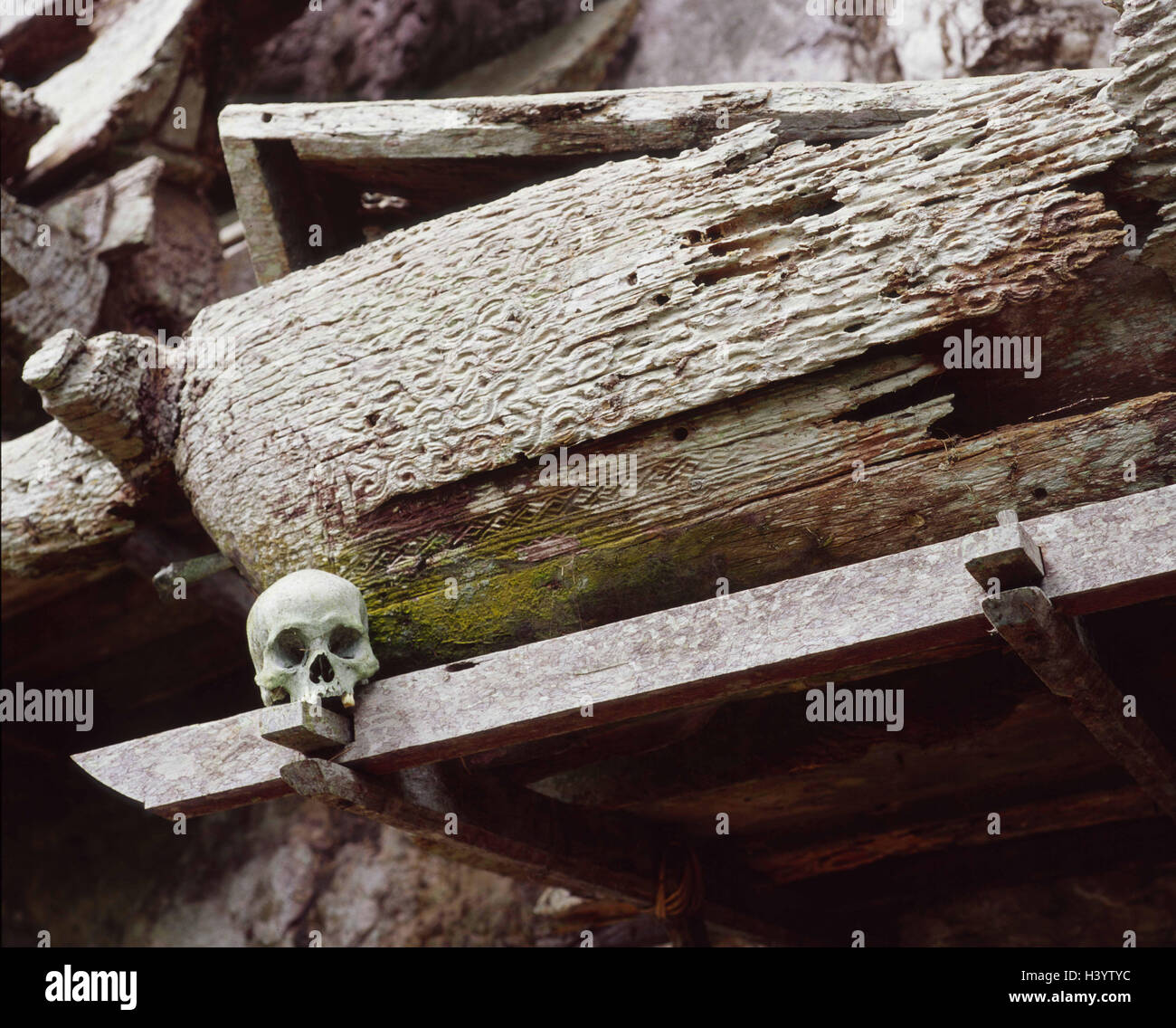 Indonesia, Kete-Kesu, goal nanny's tomb, coffin, dead person's skull, South-East Asia, island state, Celebes, - Stock Image