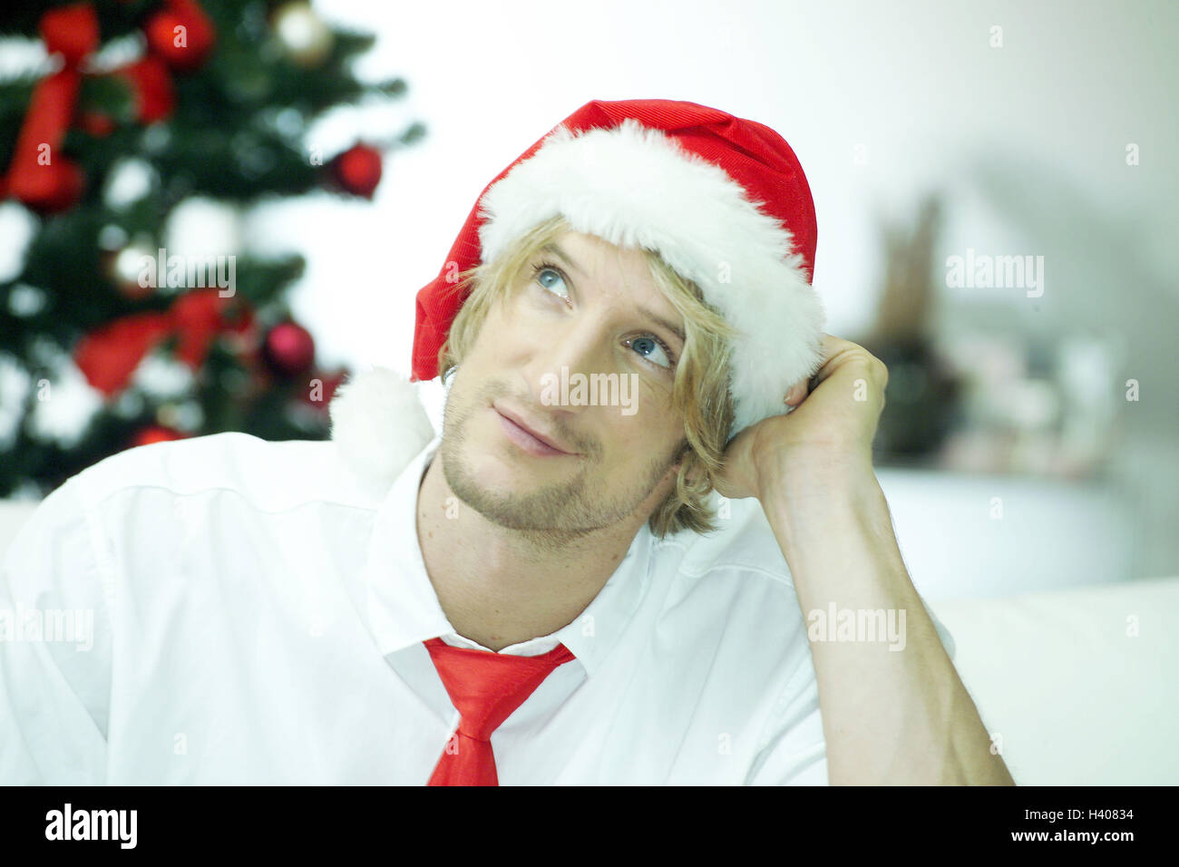 Christmas, sofa, man, young, Santa's hat, considers, to high-level views, portrait, yule tide, Christmas tree, - Stock Image