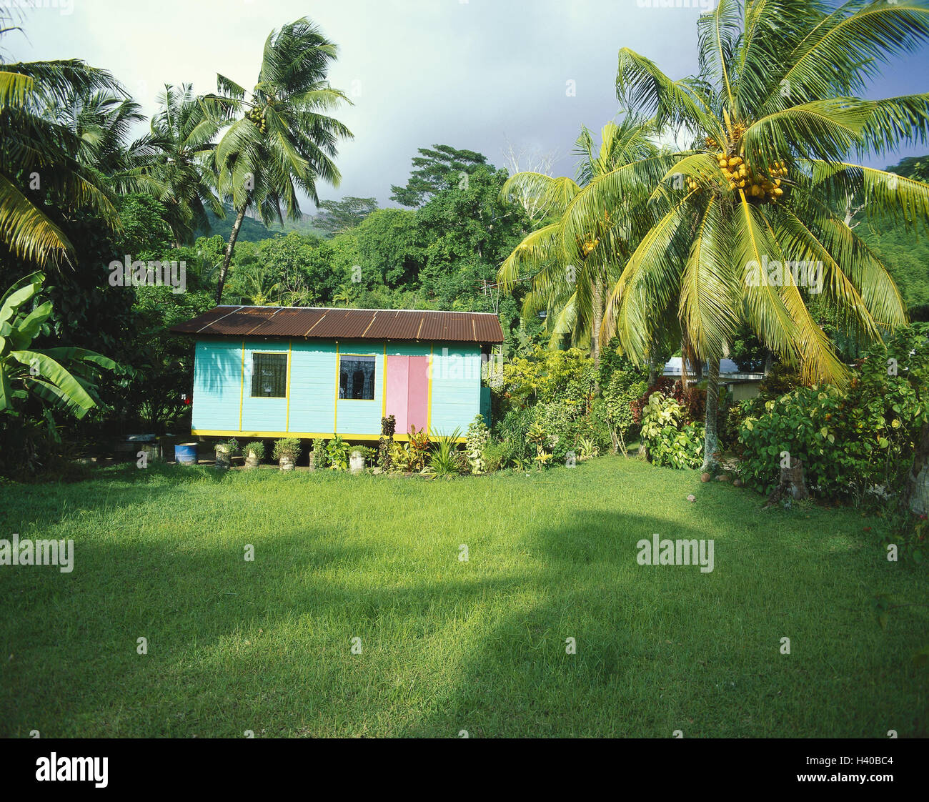 The Seychelles Mahe Palm Beach Residential House Garden