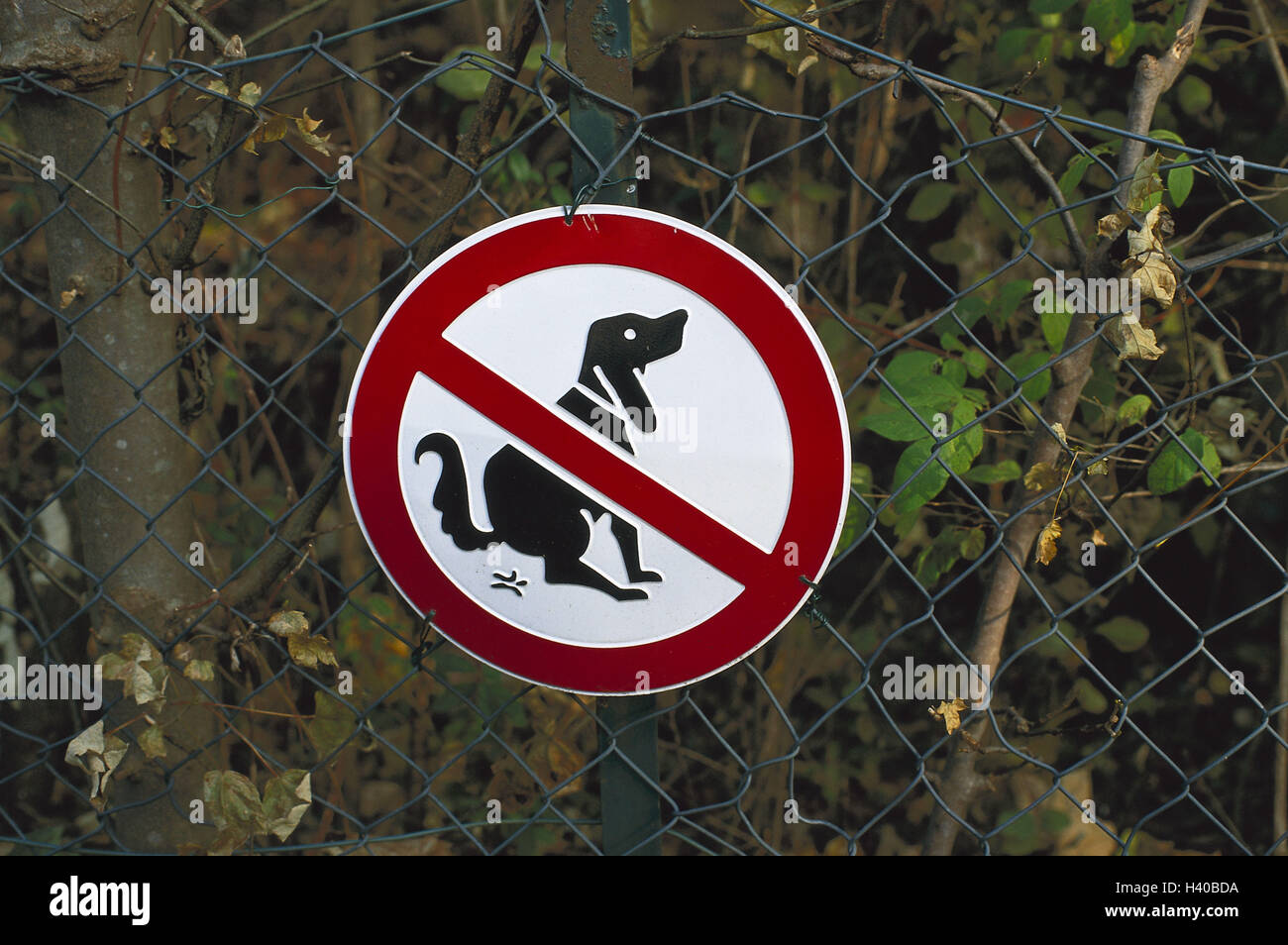 Wire fence, no parking sign, 'dog excrement', sign, sign, excrement stop, dogs, motion, dog small heap, - Stock Image