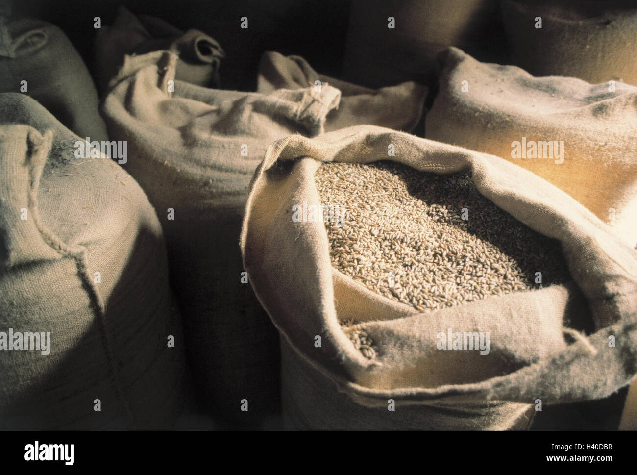 Mill, detail, grain bags, inside, grain mill, Germany, Black Forest, bags, jute bags, openly, grain, cereals, grain, - Stock Image