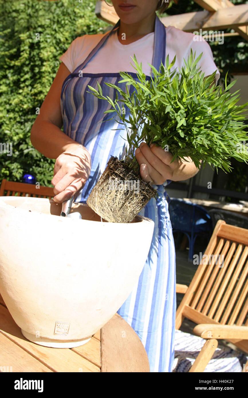 Veranda Woman Flowerpot Bamboo Implant Detail Garden 25 Years Stock Photo Alamy
