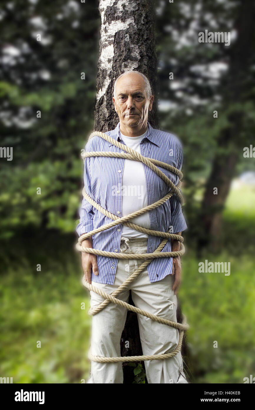 Garden, trunk, senior, tied up man, tree, bound, fastenedly, rope, cable, cord, helplessness, helplessly, defenceless, Stock Photo