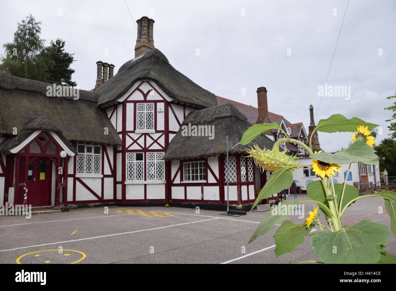 Somerleyton primary school with thatched roof, Suffolk UK - Stock Image