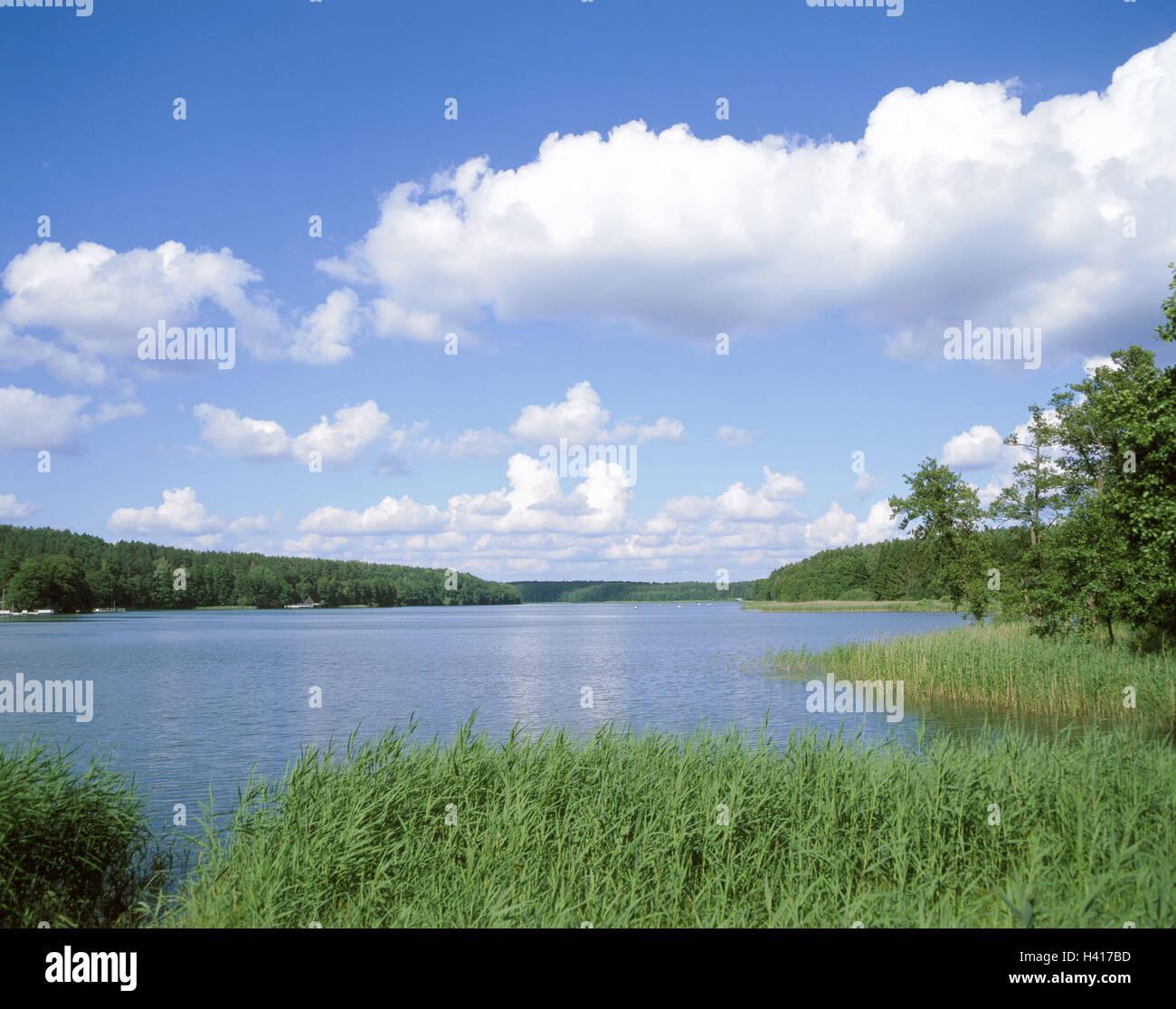 Poland, Olsztyn, scenery, lake, Europe, East, Europe, Poland, Ermland Masuria, Masuria, Allenstein, sea scenery, - Stock Image