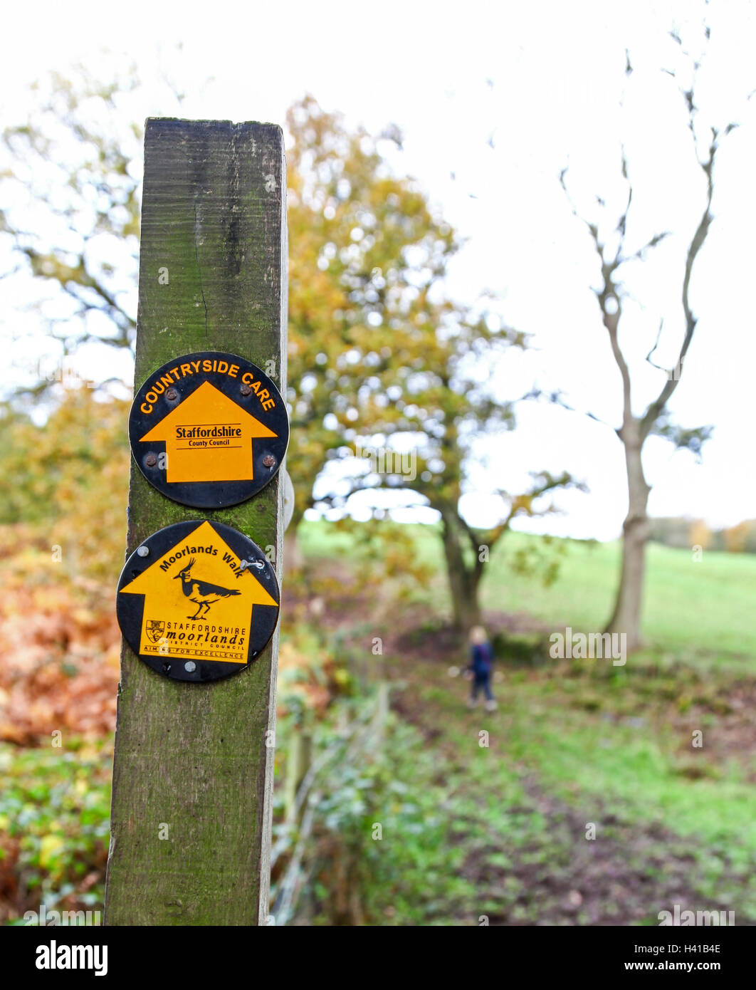 A woman walking on a local authority walk designed by Staffordshire Moorlands district council and Staffordshire - Stock Image