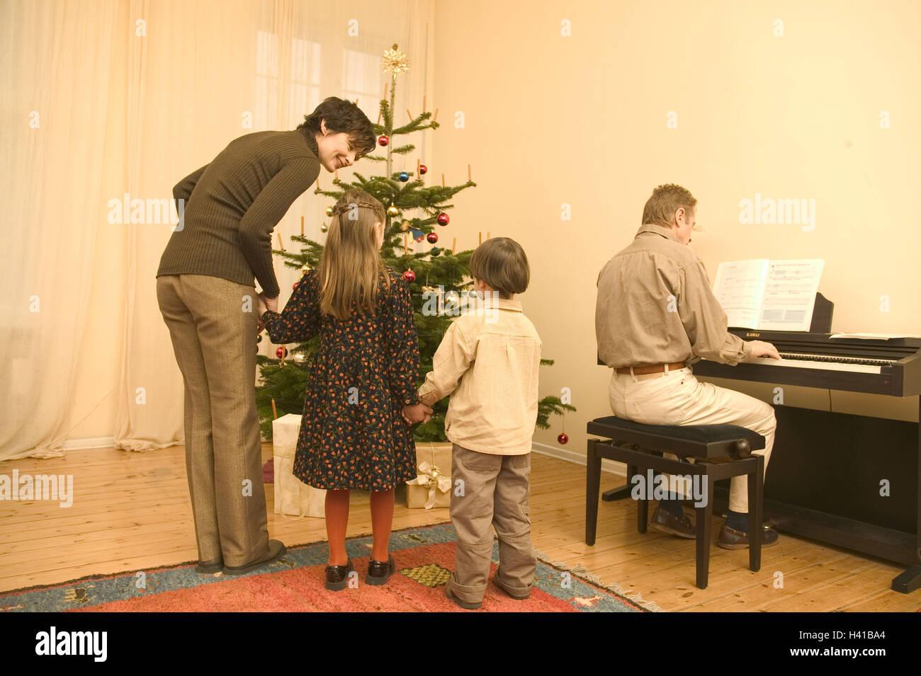 Christmas Tree Back.Christmas Sitting Rooms Christmas Tree Distribution