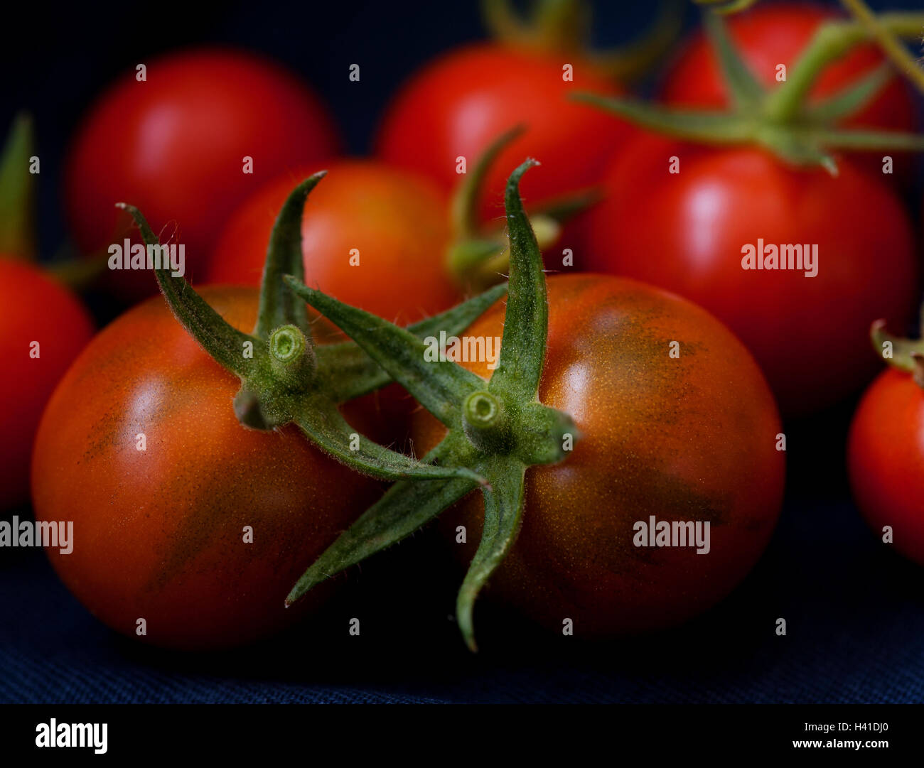 Home grown cherry tomatoes. - Stock Image