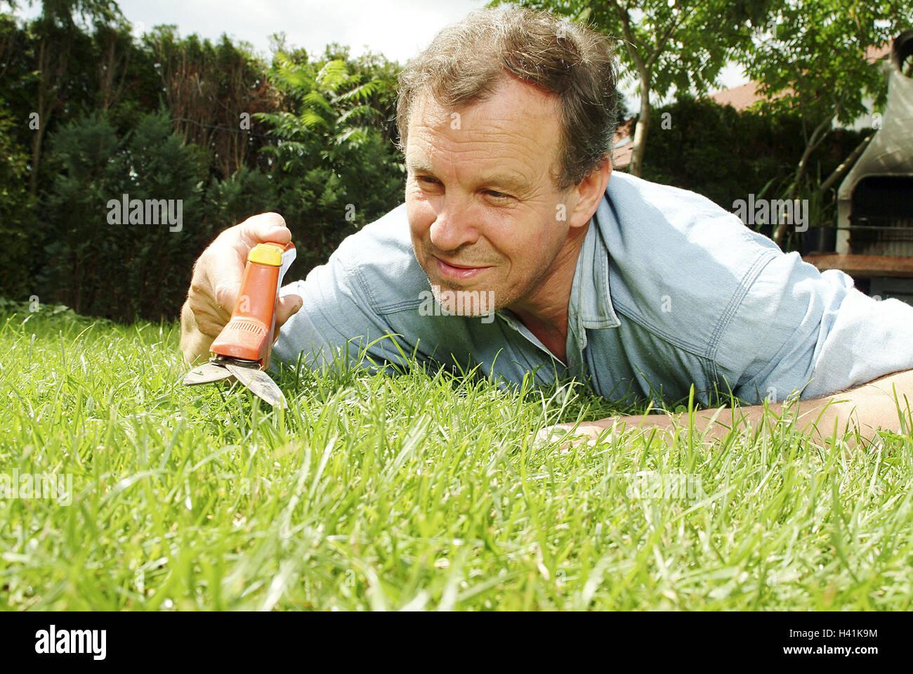 Turfs, man, lie, grass scissors, portrait, man's portrait, middle old person, 40-50 years, hobby, amateur gardener, - Stock Image