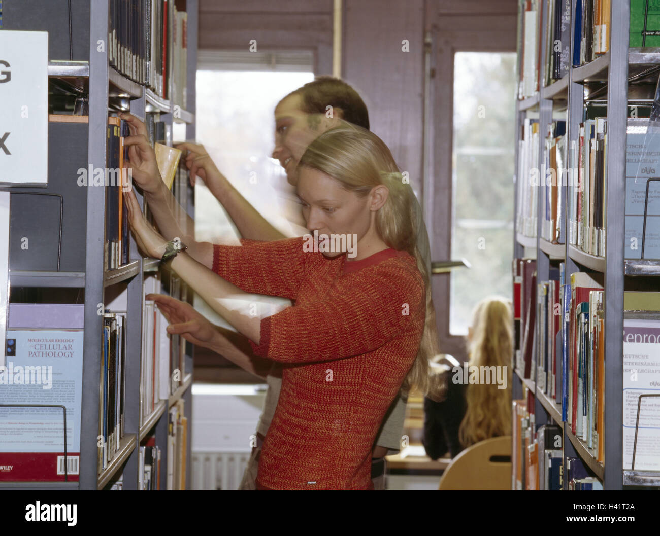 Library, student, books, select school, school library, public library, woman, man, young, shelves, books, literature, Stock Photo