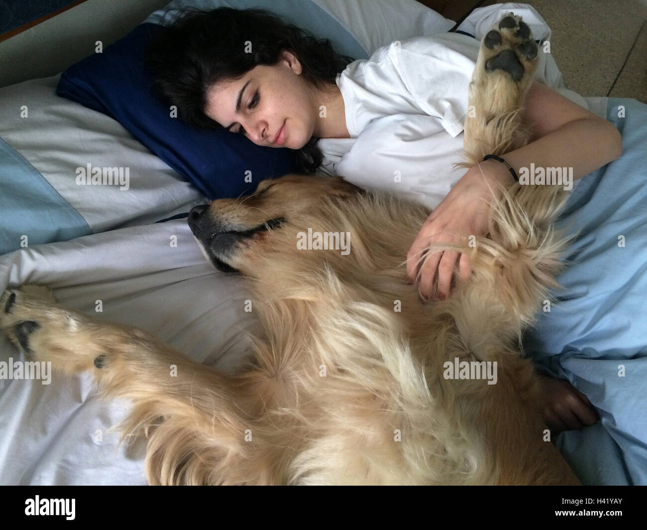 Woman lying in bed with her golden retriever dog - Stock Image