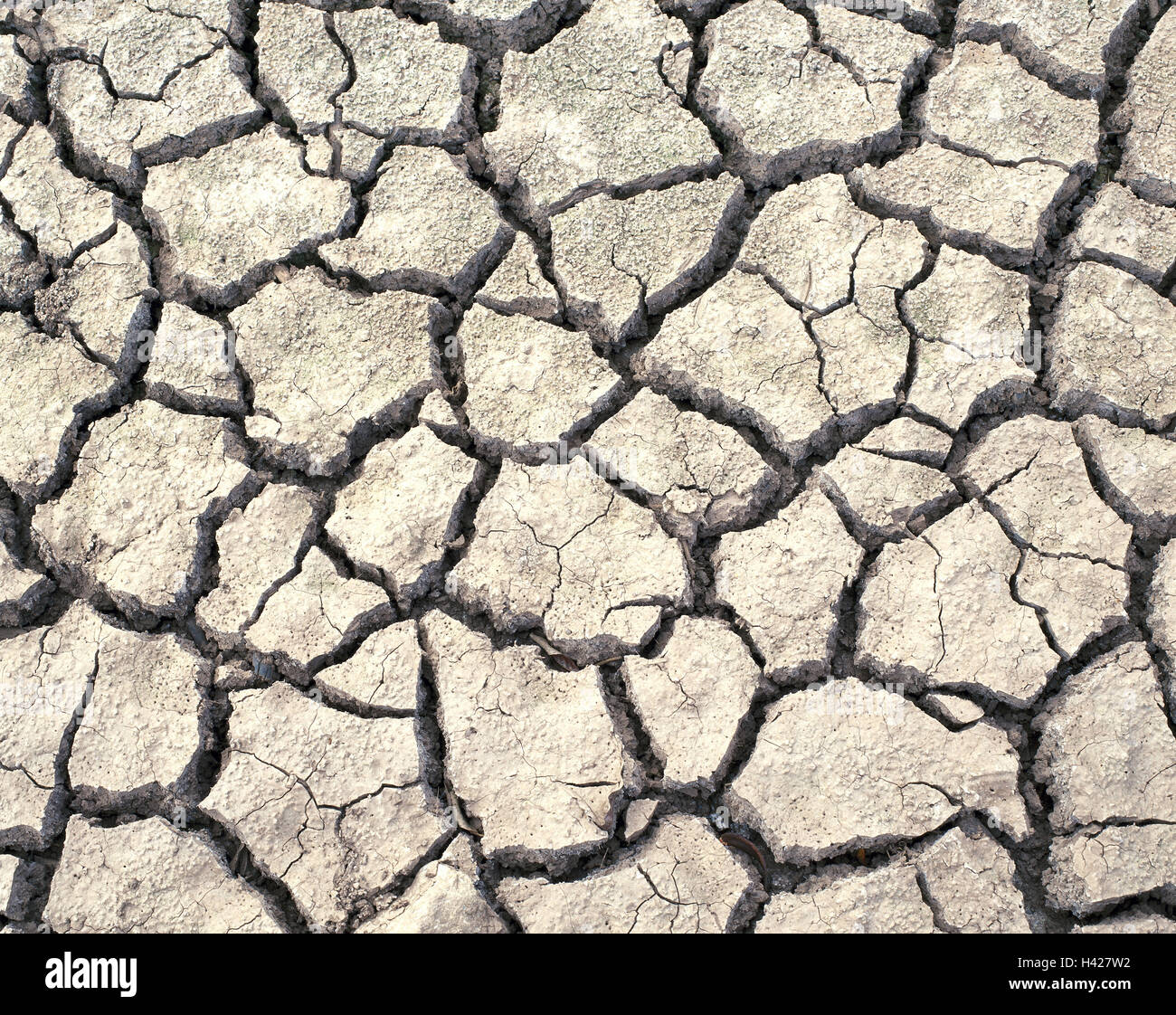 Earth, characteristical, drought, dryness, lack of water - Stock Image