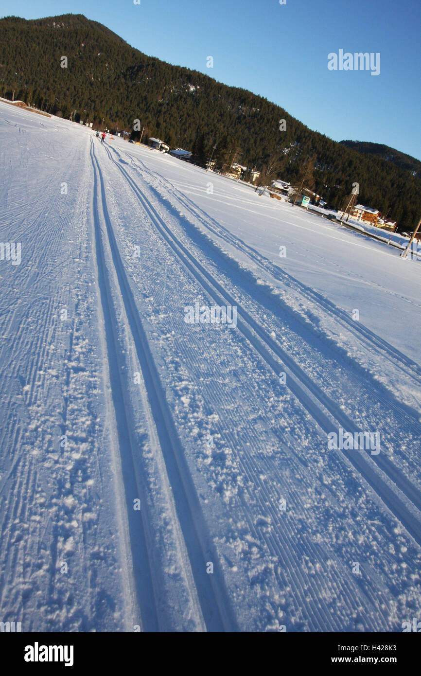 There go cross-country skiing, classically, cross-country trail, track, snow, cross country ski track, cross-country - Stock Image