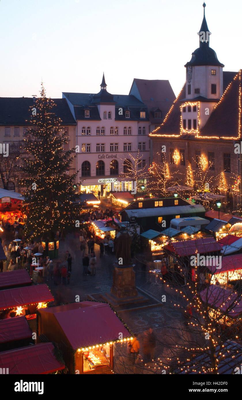 Norwegian Fir Christmas Tree