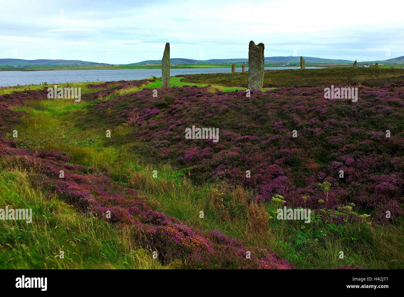 Scotland, Orkney islands, Main country, stone circle, ring Brodgar, Great Britain, south Orkney islands, Orkneyinseln, - Stock Image