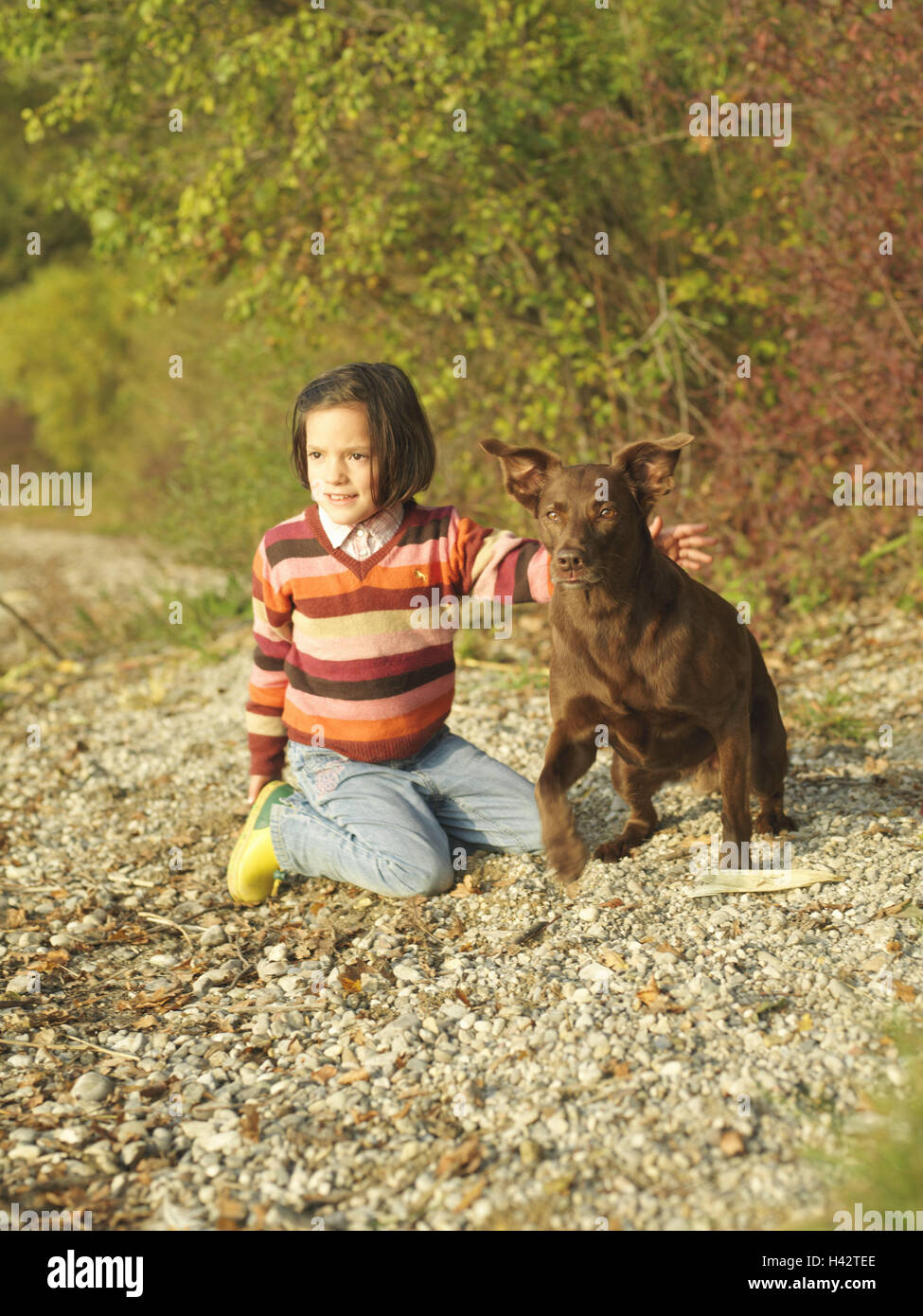 Child, girl, kneel, play dog, happy, autumn, garden, wood, edge the forest, leisure time, holidays, autumn holidays, - Stock Image