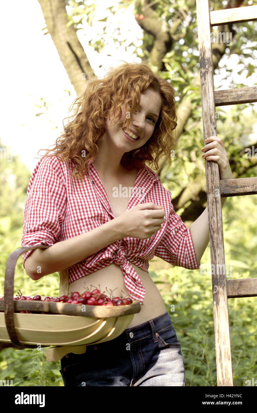 Garden, tree, conductor, woman, young, cherry harvest, half portrait, redheads, red-haired, locks, happily, smile, - Stock Image
