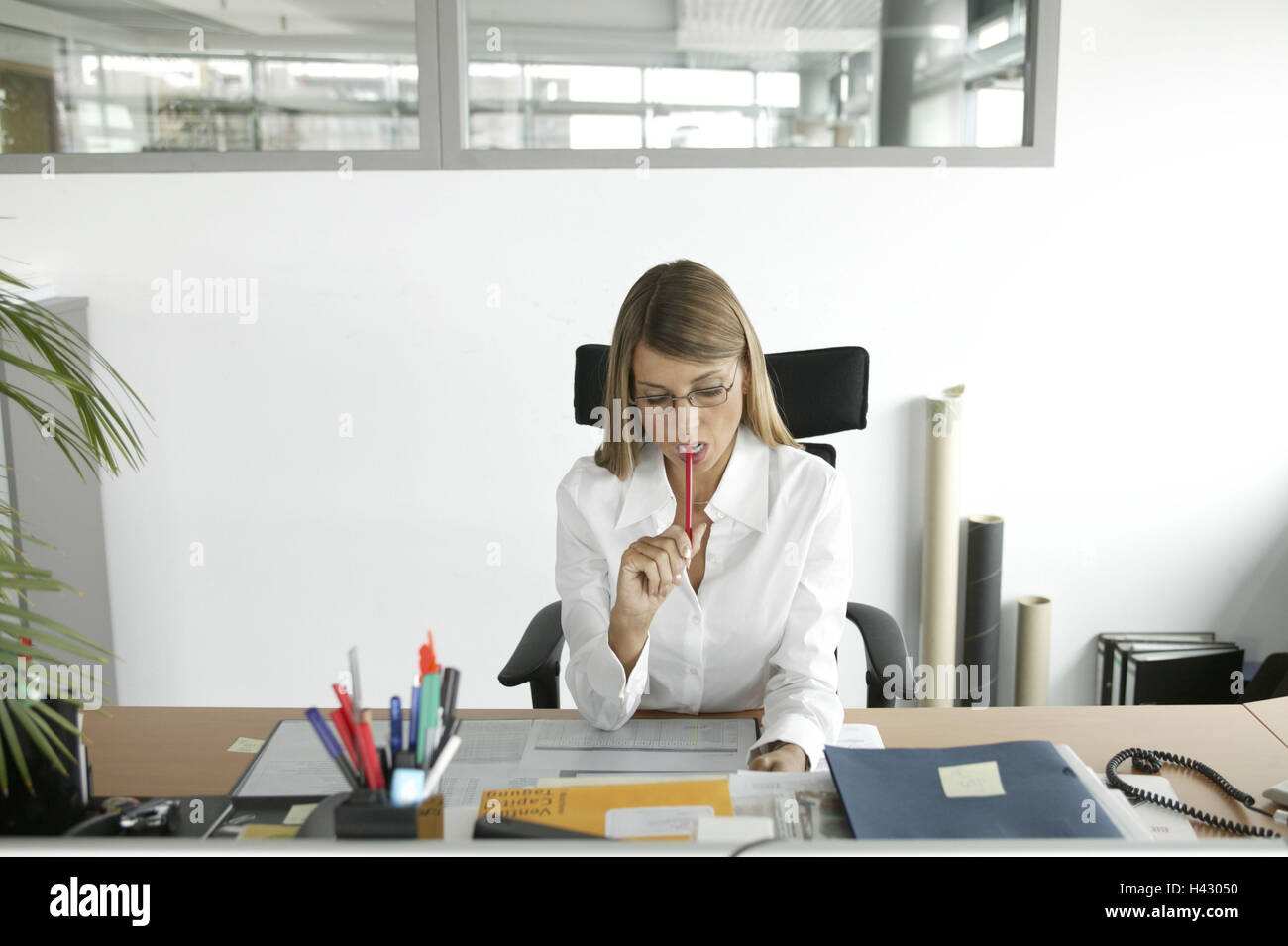 Office, desk, office workers, bases, concentration, 30-40 years, business, work, occupation, clerks, secretary, - Stock Image