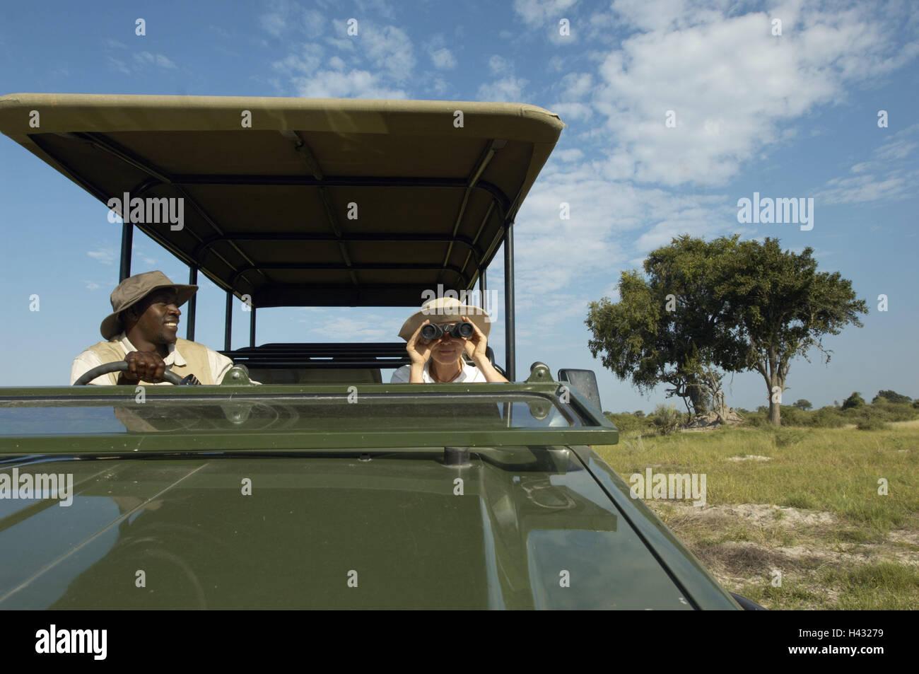 Botswana, Okavango delta, safari tour, jeep, tourist, binoculars, Africa, nature, person, man, non-white, local, - Stock Image