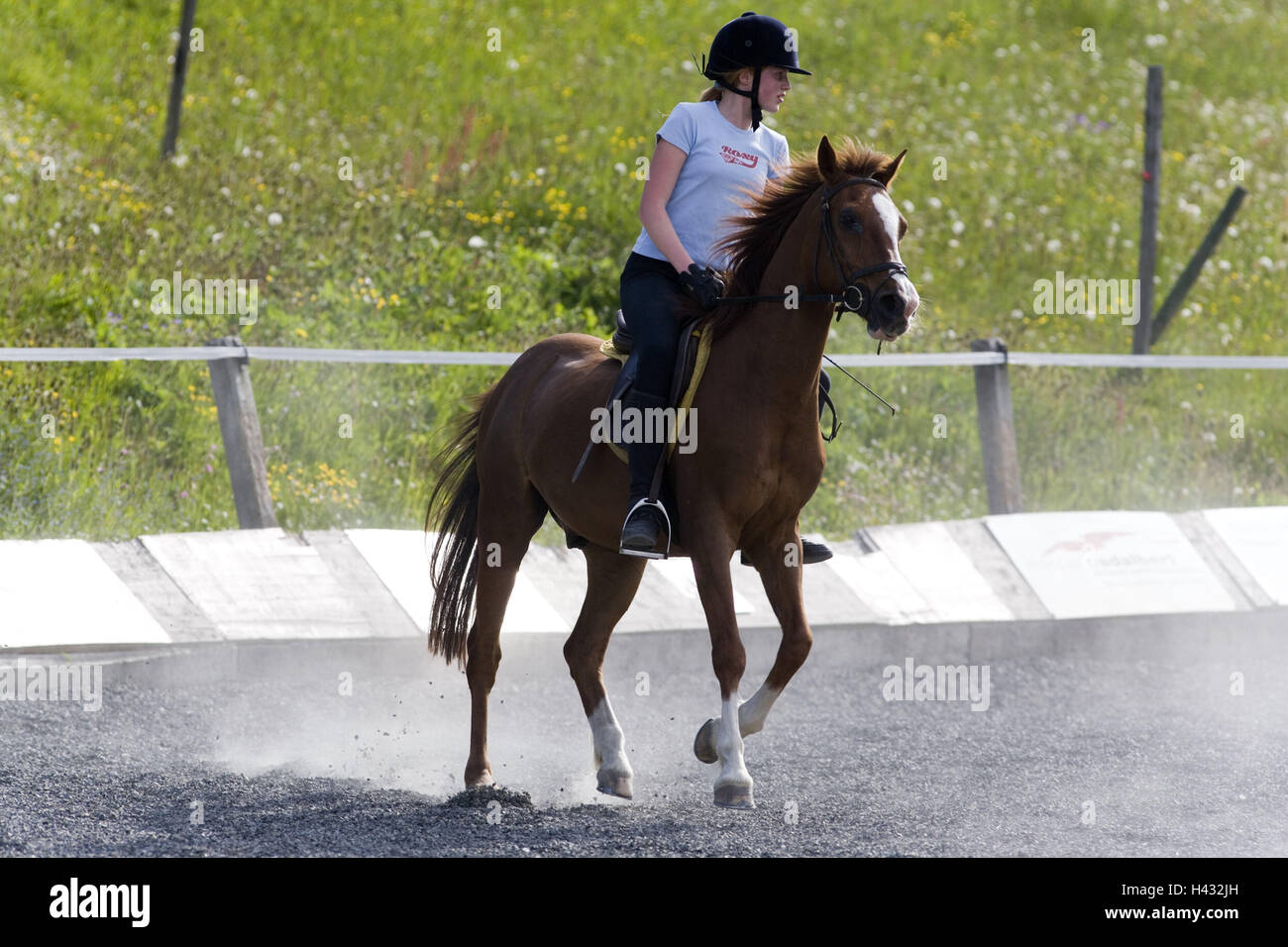 Riding space, girl, horse riding, sport, hobby, leisure time
