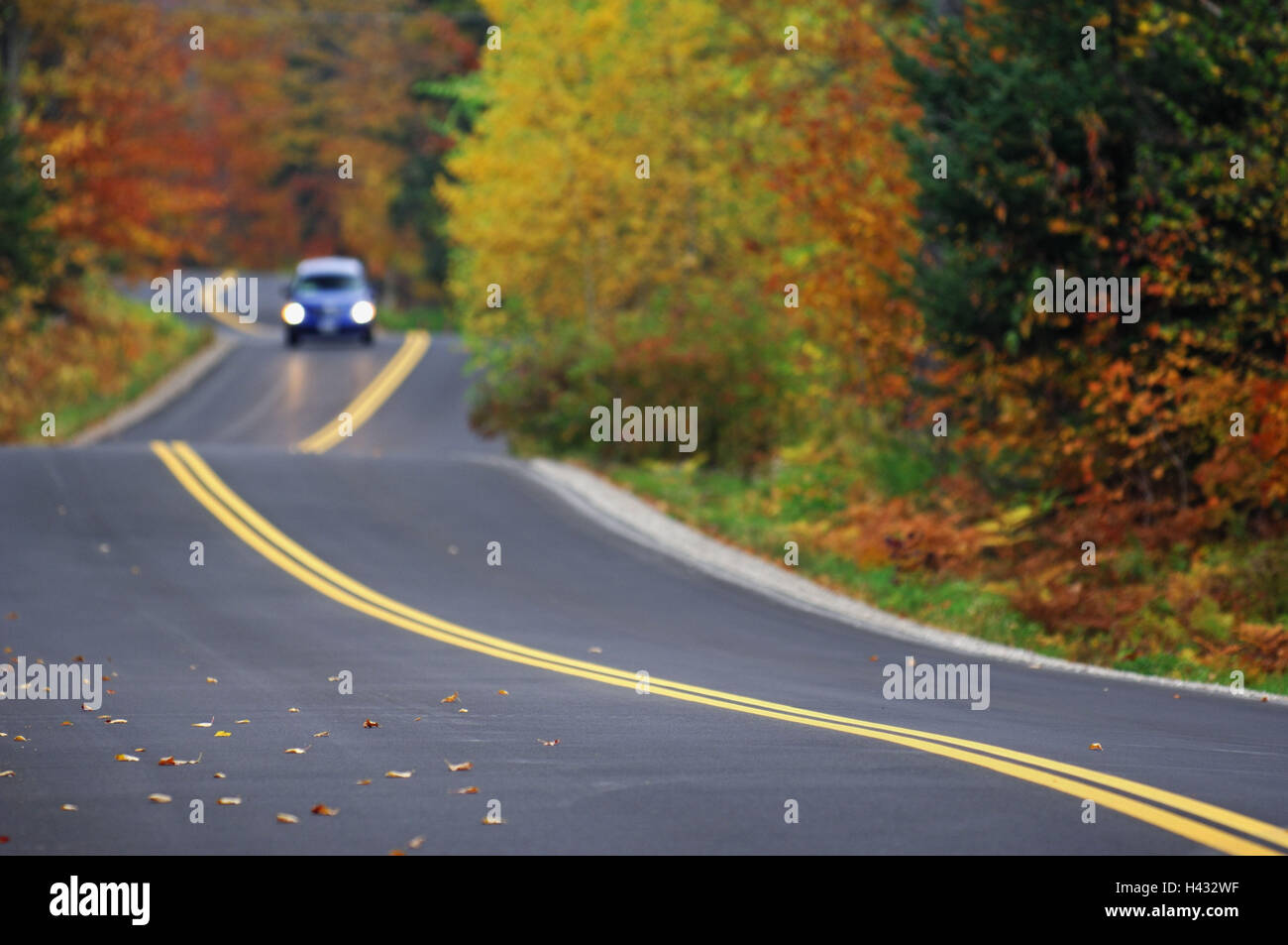 Street, car, autumn wood, no passing, the USA, Vermont - Stock Image