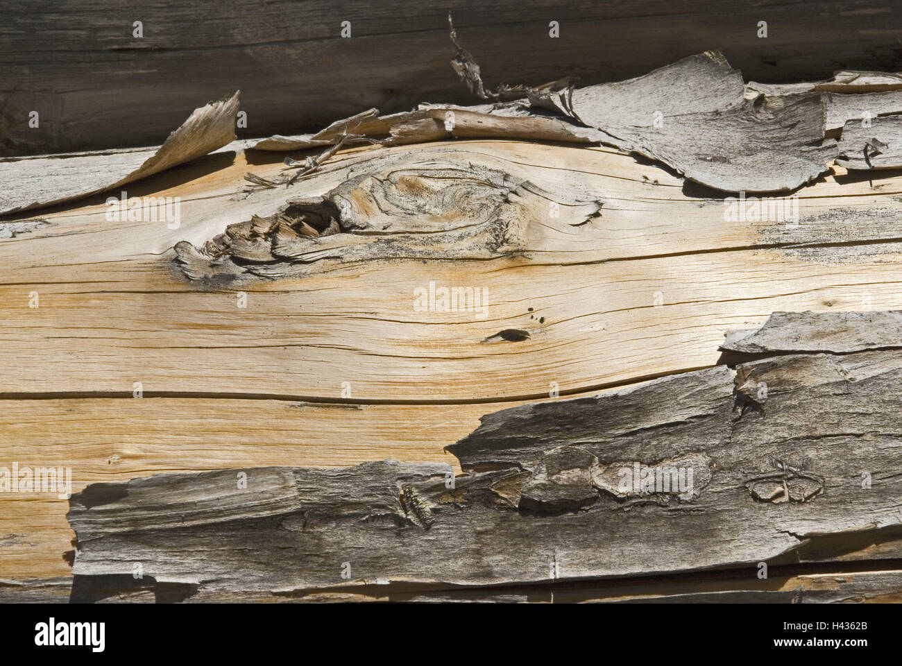 wooden, old, weather-beaten, detail, branch, fibres, wooden strain, trunk, old, knothole, tree bark, crust, wooden - Stock Image